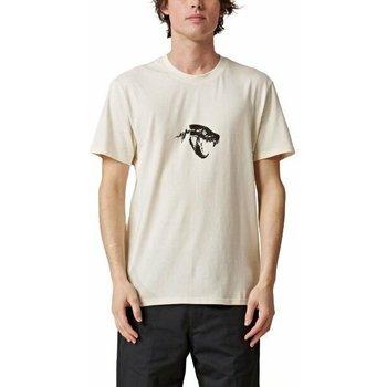 Kleidung Herren T-Shirts Globe T-shirt  Dion Agius Hollow beige