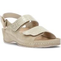 Schuhe Damen Sandalen / Sandaletten Dtorres ELENA BEIG