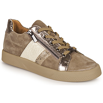 Schuhe Damen Sneaker Low Mam'Zelle AUBER Beige