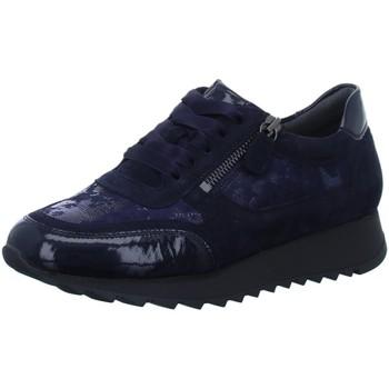 Schuhe Damen Sneaker Low Sioux Schnuerschuhe Oseka-701-J-Schnürer 64581 blau