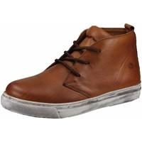 Schuhe Herren Sneaker High Cosmos Comfort Schnuerschuhe 6167502-307 braun