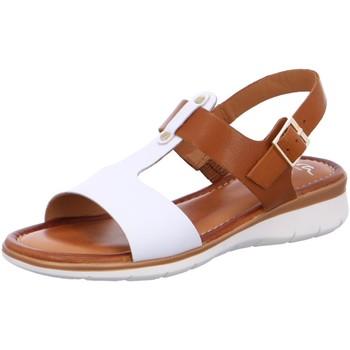Schuhe Damen Sandalen / Sandaletten Ara Sandaletten 12-23610-06 weiß