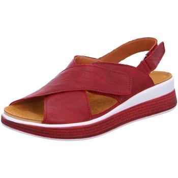 Schuhe Damen Sandalen / Sandaletten Think Sandaletten 3-000367-5000 rot