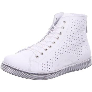 Schuhe Damen Low Boots Andrea Conti Stiefeletten REISSVERSCHLUSSSTIEFEL 0347905-001 weiß