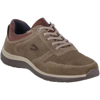 Schuhe Herren Derby-Schuhe & Richelieu Camel Active Schnuerschuhe  22233809/C24 beige