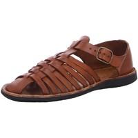 Schuhe Damen Sandalen / Sandaletten Brador Sandaletten D allg 34766 Sigaro braun