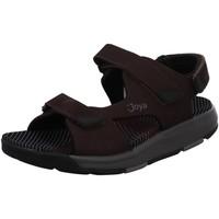 Schuhe Herren Sportliche Sandalen Joya Offene Alexander dark brown braun