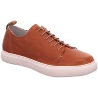 Schuhe Damen Sneaker Low Everybody Schnuerschuhe Geglia 19460P1258 braun
