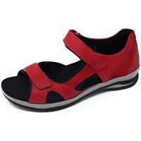 Schuhe Damen Sandalen / Sandaletten Fidelio Sandaletten Hilly 496023 37 rot