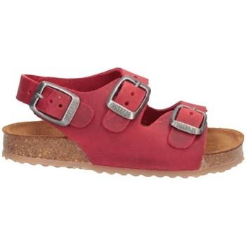 Schuhe Jungen Sandalen / Sandaletten Plakton 850046 Sandalen Kind ROT ROT