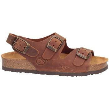 Schuhe Jungen Sandalen / Sandaletten Plakton 120046 Sandalen Kind LEDER LEDER