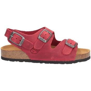 Schuhe Jungen Sandalen / Sandaletten Plakton 120046 Sandalen Kind ROT ROT