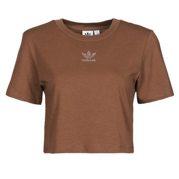 Kleidung Damen T-Shirts adidas Originals CROPPED  TEE Braun
