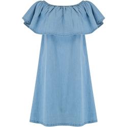Kleidung Damen Kurze Kleider Animal  Chambray-Blau