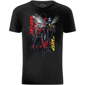 Kleidung Herren T-Shirts Ant-Man  Schwarz