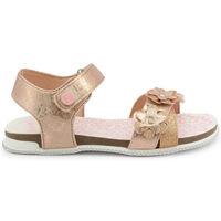 Schuhe Mädchen Sandalen / Sandaletten Shone - l6133-036 Rose