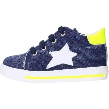 Schuhe Jungen Sneaker Low Falcotto - Polacchino blu SASHA-1C83 BLU