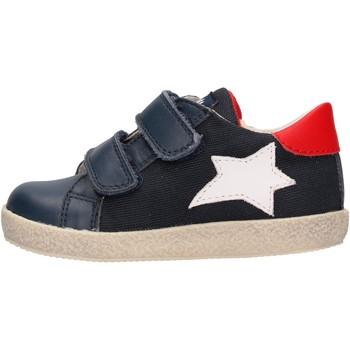 Schuhe Jungen Sneaker Low Falcotto - Sneaker blu ASPASIA VL-1C23 BLU