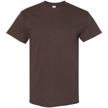 Kleidung Herren T-Shirts Gildan 5000 Schokoladenbraun
