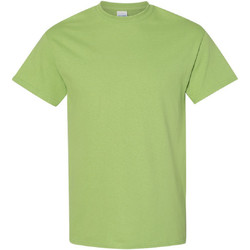 Kleidung Herren T-Shirts Gildan 5000 Kiwi