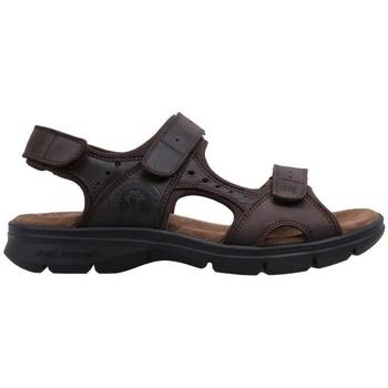 Schuhe Herren Sandalen / Sandaletten Panama Jack  Braun
