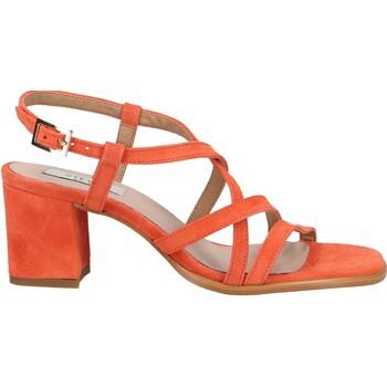 Schuhe Damen Sandalen / Sandaletten Steven New York Sandalen Coral