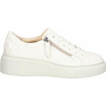 Schuhe Damen Sneaker Paul Green Sneaker Hellgrau
