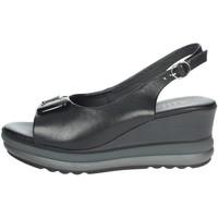 Schuhe Damen Sandalen / Sandaletten Repo 20428-E1 Schwarz