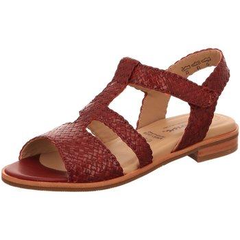 Schuhe Damen Sandalen / Sandaletten Sioux Sandaletten Cosinda 66391 rot