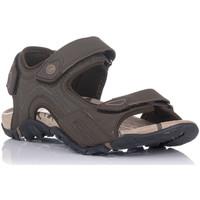 Schuhe Herren Sportliche Sandalen Chiruca TUCUMAN Braun