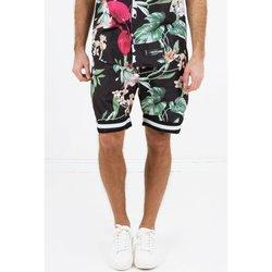 Kleidung Herren Shorts / Bermudas Sixth June Short  tropical noir
