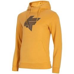 Kleidung Herren Sweatshirts 4F BLM010 Orangefarbig