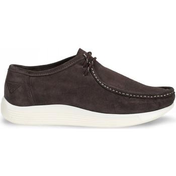 Schuhe Herren Slipper Docksteps DSE106530 Braun
