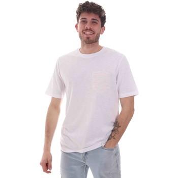 Kleidung Herren T-Shirts Sseinse TE1852SS Weiß