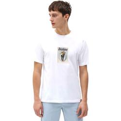 Kleidung Herren T-Shirts Dickies DK0A4X9IWHX1 Weiß