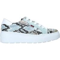 Schuhe Damen Sneaker Low CallagHan 14928 Grün
