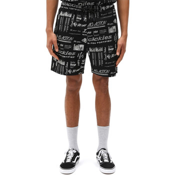 Kleidung Herren Shorts / Bermudas Dickies DK0A4XCGBLK1 Schwarz