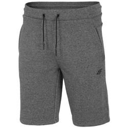 Kleidung Herren Shorts / Bermudas 4F SKMD014 Grau