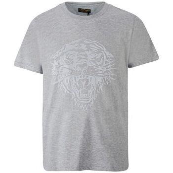 Kleidung Herren T-Shirts Ed Hardy - Tiger glow t-shirt mid-grey Grau