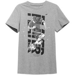 Kleidung Herren T-Shirts 4F H4L21 TSM011 Grau