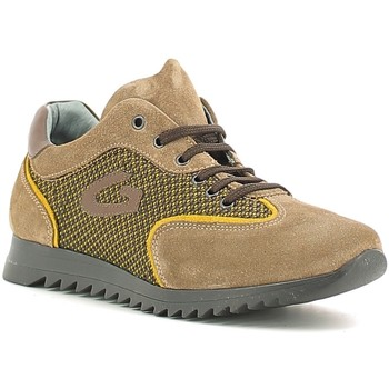 Schuhe Kinder Sneaker Low Alberto Guardiani GK22343G Beige
