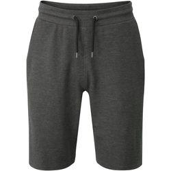 Kleidung Herren Shorts / Bermudas Regatta  Grau
