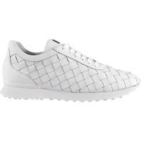 Schuhe Damen Sneaker Low Högl Ziehen Sie Trainer Weiß an Weiß