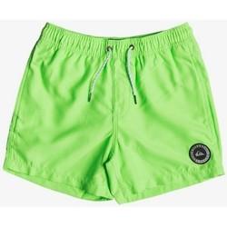 Kleidung Kinder Badeanzug /Badeshorts Quiksilver EVERYDAY 13