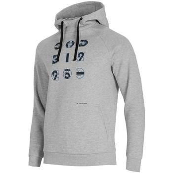 Kleidung Herren Sweatshirts 4F BLM014 Grau