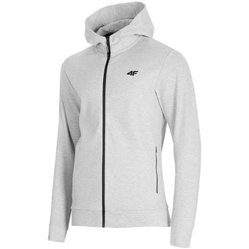 Kleidung Herren Sweatshirts 4F BLM013 Grau
