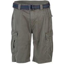 Kleidung Herren Shorts / Bermudas Brunotti Sport CaldECO-N Mens Walkshort 2131130013 6551 Other