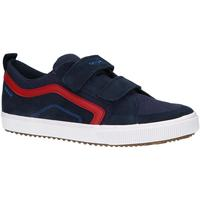Schuhe Jungen Multisportschuhe Geox J152CA 02210 J ALONISSO Azul