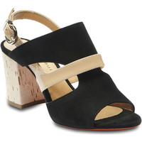 Schuhe Damen Sandalen / Sandaletten Barbara Bui N 5239 SC 10 nero