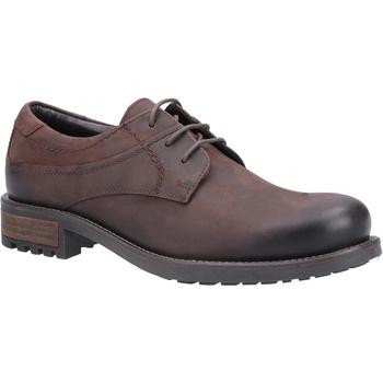 Schuhe Herren Derby-Schuhe Cotswold  Braun